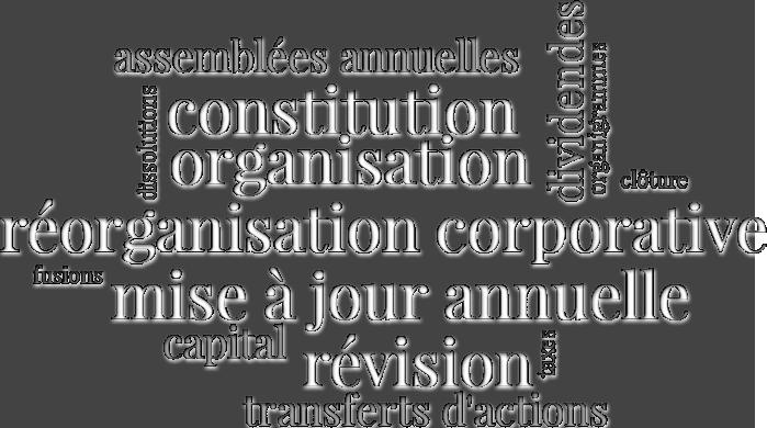 Mise à jour annuelle, constitution, organisation, révision, réorganisation corporative et autres